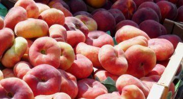農地 果実